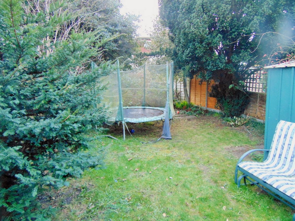 Garden 2 -
