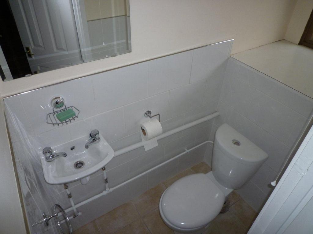 DS toilet.jpg