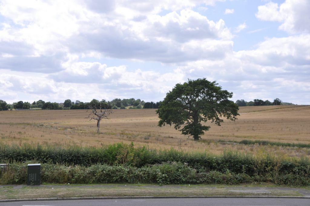 Black Horse Lane  South Mimms  EN6